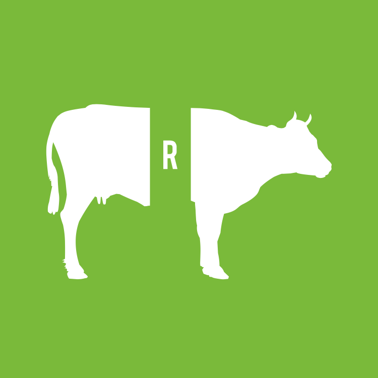 Rebus Zone – Crazy Logic Riddles – Level 3 – Puzzle 4