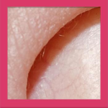 Quiz Pic – Close Ups – Level 1 – Puzzle 16