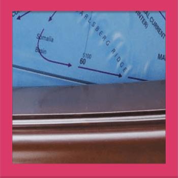 Quiz Pic – Close Ups – Level 1 – Puzzle 1